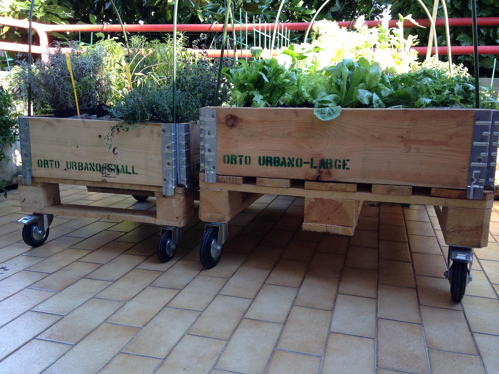 ORTO URBANO - Il tuo orto dove vuoi